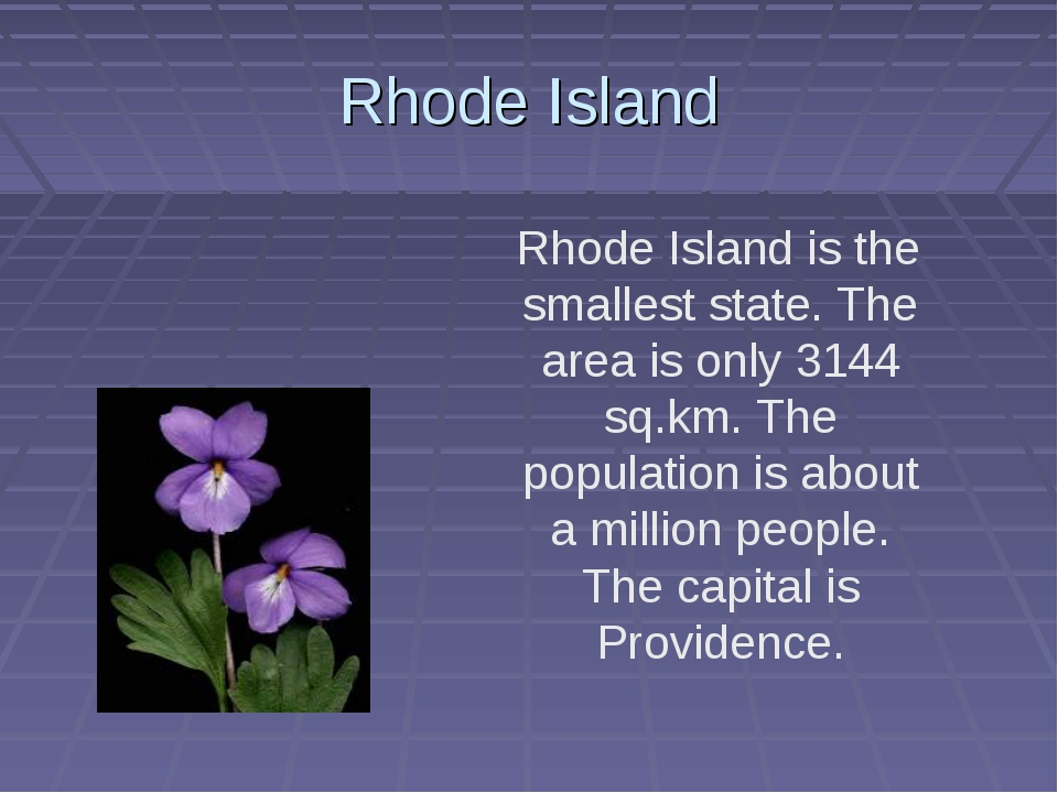 Rhode Island Rhode Island is the smallest state. The area is only 3144 sq.km....