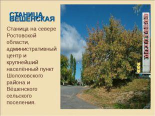 СТАНИЦА ВЁШЕНСКАЯ Станица на севере Ростовской области, административный цент