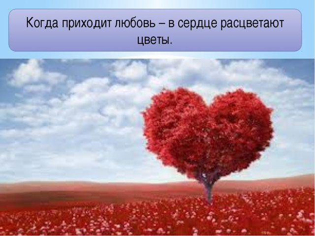 Когда приходит любовь – в сердце расцветают цветы.