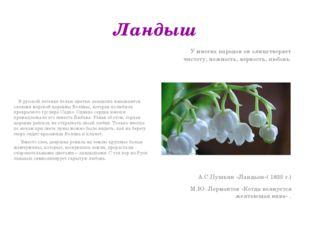 Ландыш В русской легенде белые цветки ландыша называются слезами морской царе