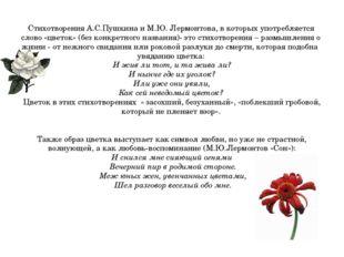 Стихотворения А.С.Пушкина и М.Ю. Лермонтова, в которых употребляется слово «ц