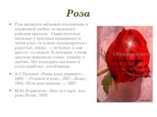 Роза Роза является эмблемой поклонения и пламенной любви, ее называют райским