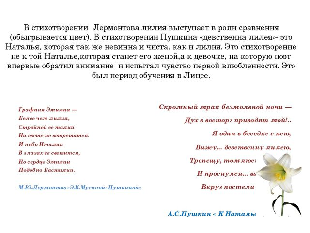 В стихотворении Лермонтова лилия выступает в роли сравнения (обыгрывается цве...