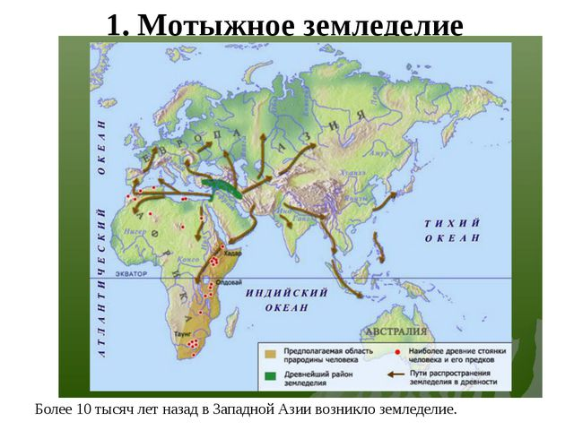 1. Мотыжное земледелие Более 10 тысяч лет назад в Западной Азии возникло земл...