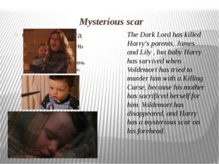 The Dark Lord has killed Harry's parents,James and Lily, but baby Harry has