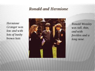 Hermione Granger was low and with lots of bushy brown hair. Ronald Weasley wa