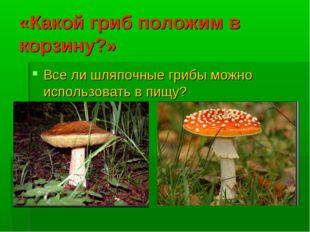 «Какой гриб положим в корзину?» Все ли шляпочные грибы можно использовать в п