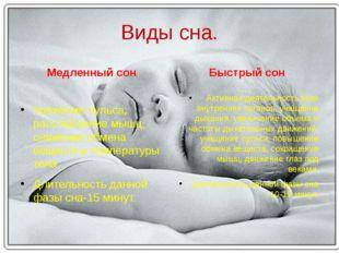Виды сна. Медленный сон Урежение пульса, расслабление мышц, снижение обмена в