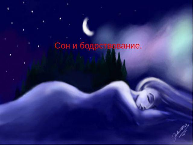 Сон и бодрствование.