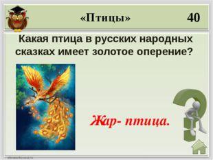 10 Её отчество Патрикеевна Лиса. Звери
