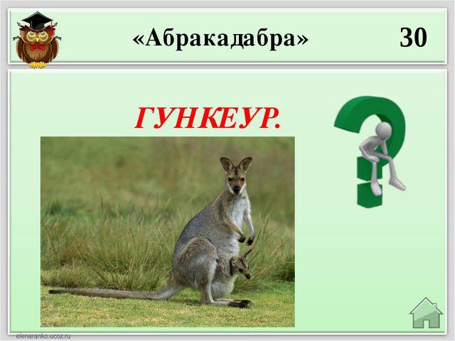 ТЛЕСВЯКОЧ. 50 «Абракадабра»