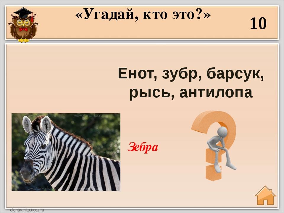 Верблюд, осёл, олень, рысь, нарвал 30 «Угадай, кто это?» Ворон.