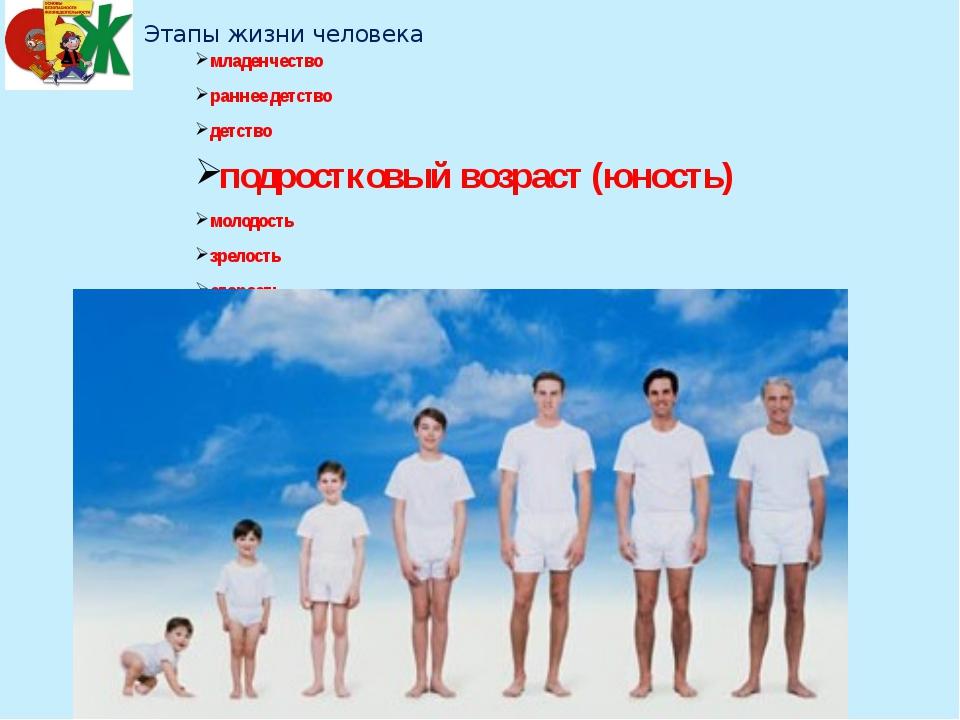Этапы жизни человека младенчество раннее детство детство подростковый воз...