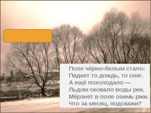 Поле чёрно-белым стало: Падает то дождь, то снег. А ещё похолодало — Льдом с