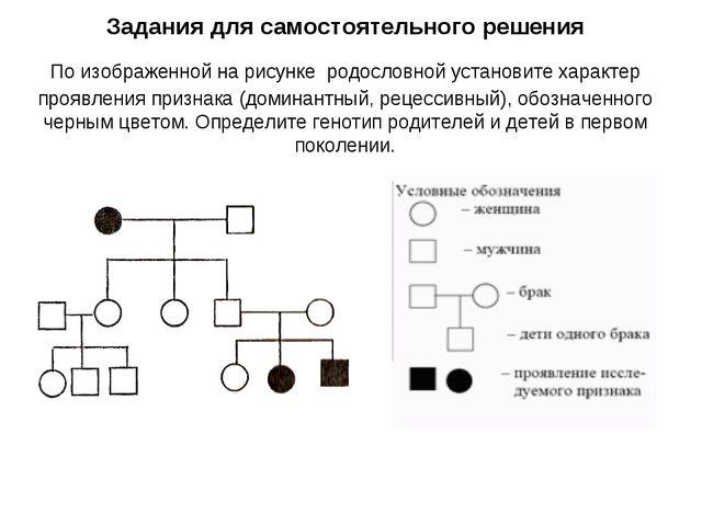 Задания для самостоятельного решения По изображенной на рисунке родословной у...