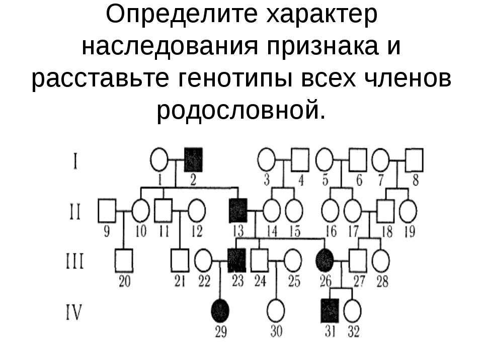 Определите характер наследования признака и расставьте генотипы всех членов р...