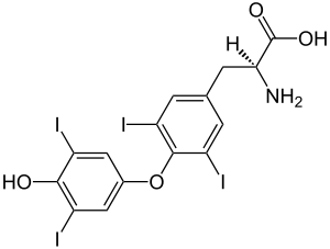 https://upload.wikimedia.org/wikipedia/commons/thumb/2/27/%28S%29-Thyroxine_Structural_Formulae_V2.svg/300px-%28S%29-Thyroxine_Structural_Formulae_V2.svg.png
