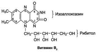 http://dendrit.ru/files/002biohim14.jpg