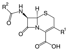 https://upload.wikimedia.org/wikipedia/commons/thumb/a/a6/Cephalosporin_core_structure.svg/220px-Cephalosporin_core_structure.svg.png