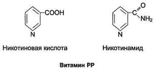 http://dendrit.ru/files/004biohim14.jpg
