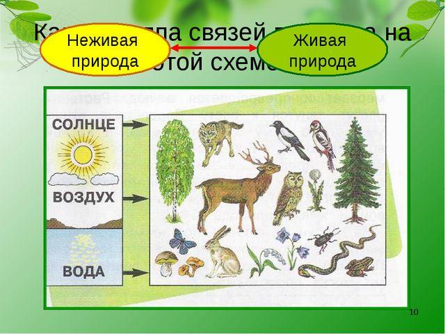 Какая группа связей показана на этой схеме? Неживая природа Живая природа *