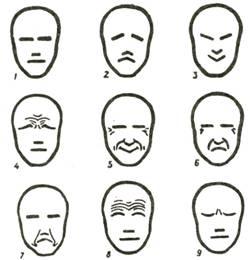 D:\главные документы\УЧЕБНАЯ\ОТКРЫТЫЕ УРОКИ И МЕРОПРИЯТИЯ\Конструкция головы человека и ее пропорции\pic_119.jpg
