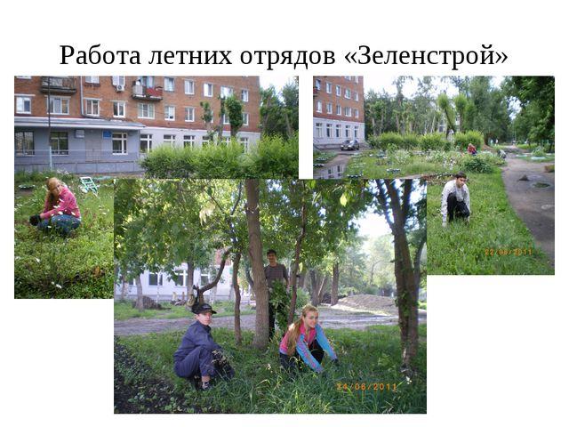 Работа летних отрядов «Зеленстрой»