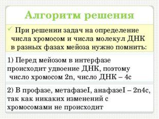 Алгоритм решения задач При решении задач на определение числа хромосом и числ