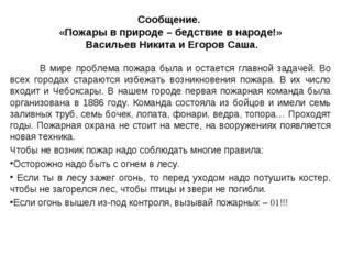 Сообщение. «Пожары в природе – бедствие в народе!» Васильев Никита и Егоров С