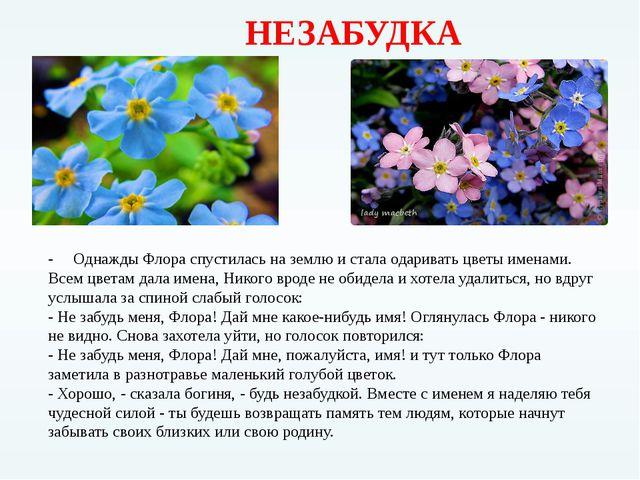 НЕЗАБУДКА - Однажды Флора спустилась на землю и стала одаривать цветы именам...