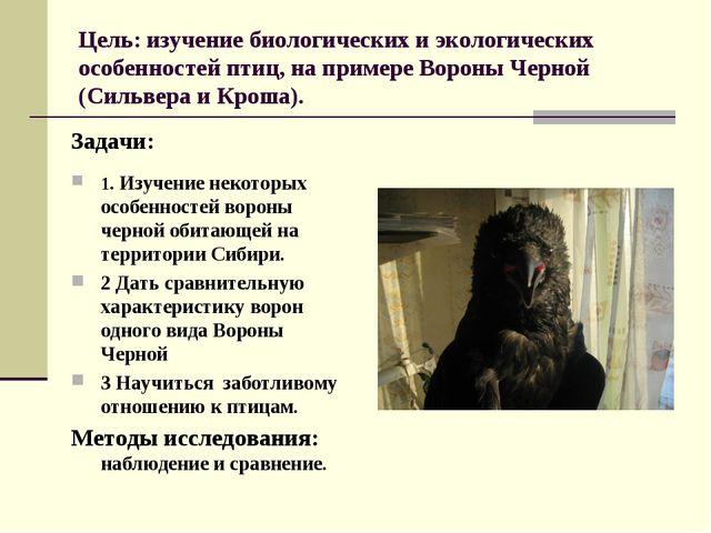Цель: изучение биологических и экологических особенностей птиц, на примере Во...