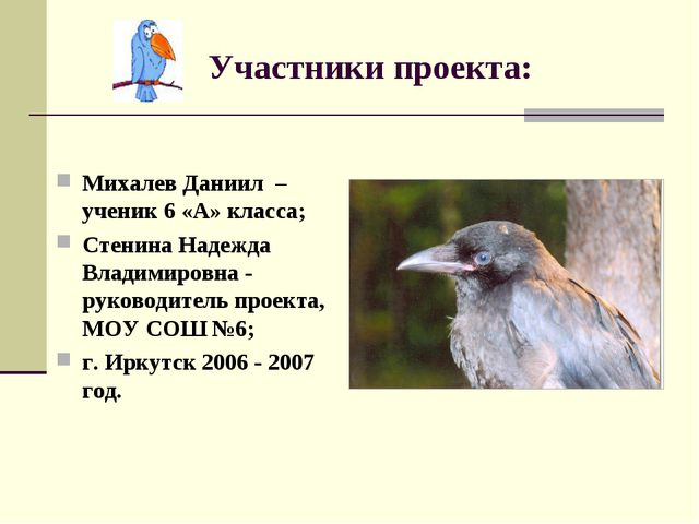 Участники проекта: Михалев Даниил – ученик 6 «А» класса; Стенина Надежда Вла...