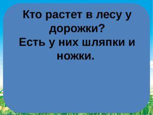 Кто растет в лесуу дорожки? Есть у них шляпкии ножки. FokinaLida.75@mail.ru