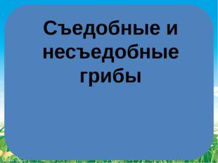 Съедобные и несъедобные грибы FokinaLida.75@mail.ru