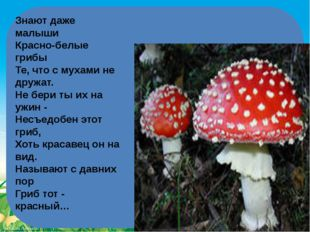 Знают даже малыши Красно-белые грибы Те, что с мухами не дружат. Не бери т