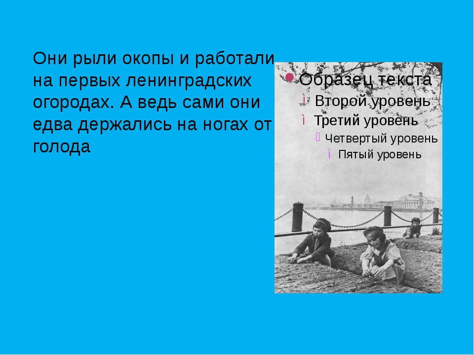 Они рыли окопы и работали на первых ленинградских огородах. А ведь сами они...