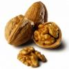 Где родина грецкого ореха?