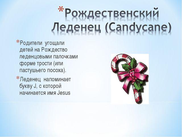 Родители угощали детей на Рождество леденцовыми палочками форме трости (или п...