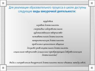 Для реализации образовательного процесса в школе доступны следующие виды внеу
