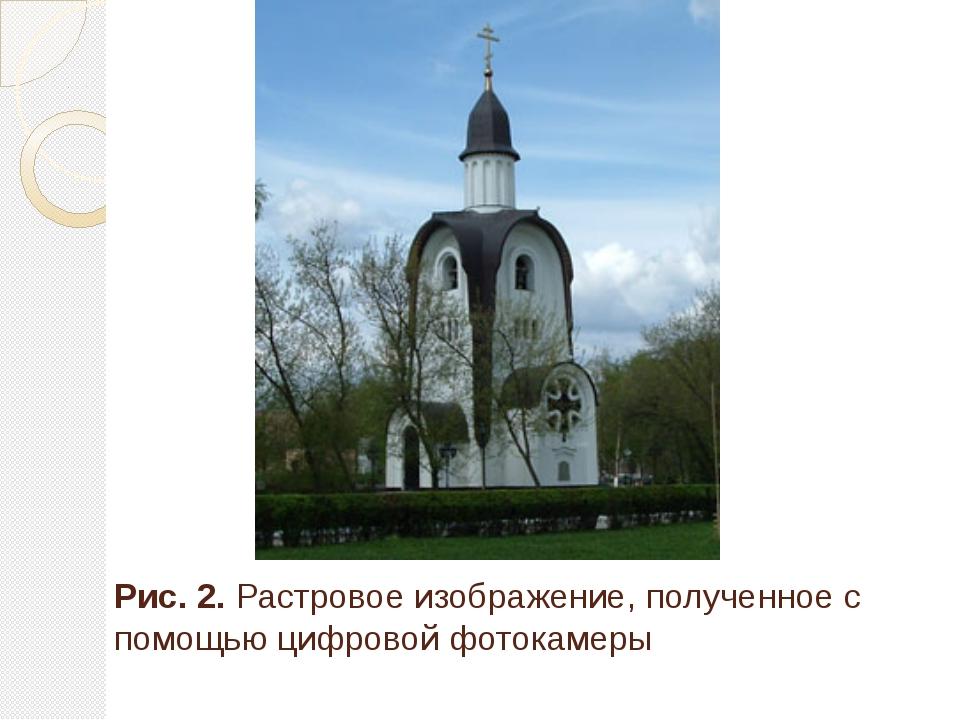Рис. 2. Растровое изображение, полученное с помощью цифровой фотокамеры