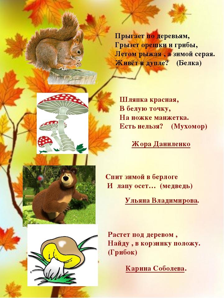Прыгает по деревьям, Грызет орешки и грибы, Летом рыжая , а зимой серая. Жив...