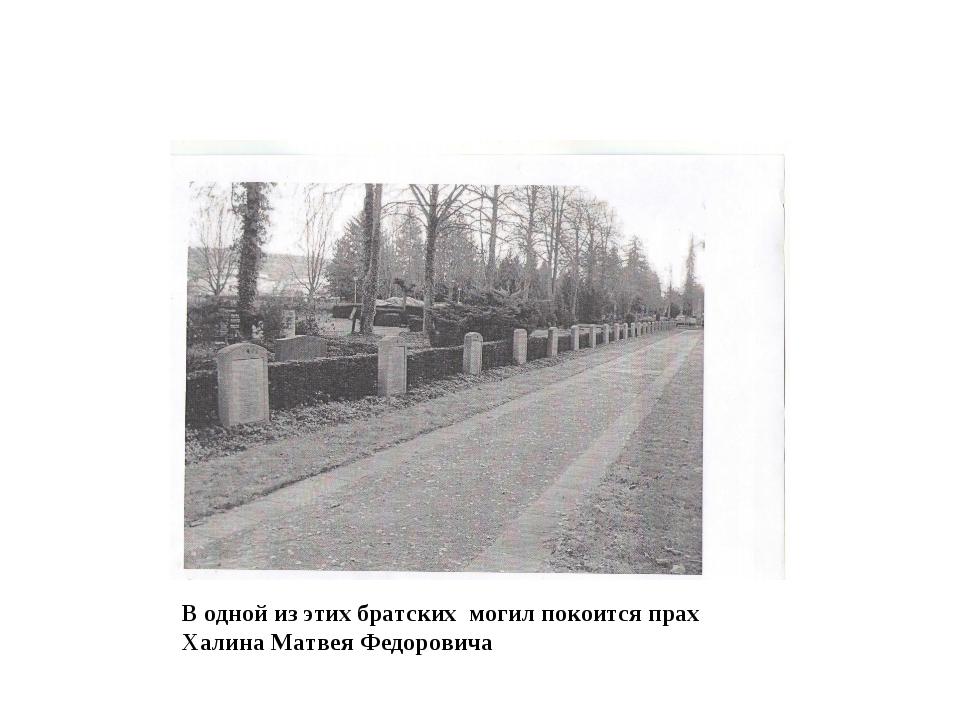 В одной из этих братских могил покоится прах Халина Матвея Федоровича