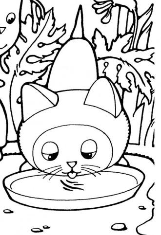 F:\для кр 5 кл\котенок локает молоко из миски.jpg