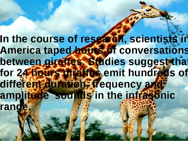 In the course of research, scientists in America taped hours of conversations...
