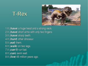 T-Rex 1.It (have) a huge head and a strong neck. 2.It (have) short arms with