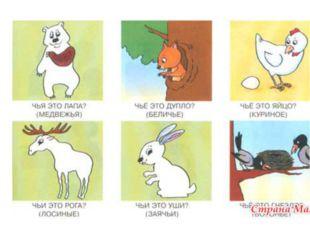 Назовите домашних животных, диких животных, птиц. Принадлежность предметов.