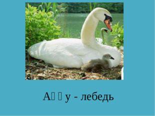 Аққу - лебедь