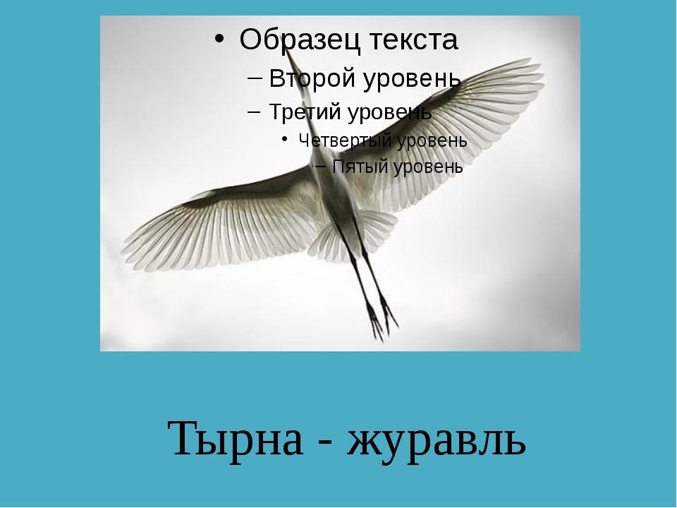 Тырна - журавль