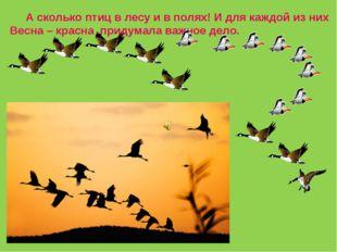 А сколько птиц в лесу и в полях! И для каждой из них Весна – красна придумал