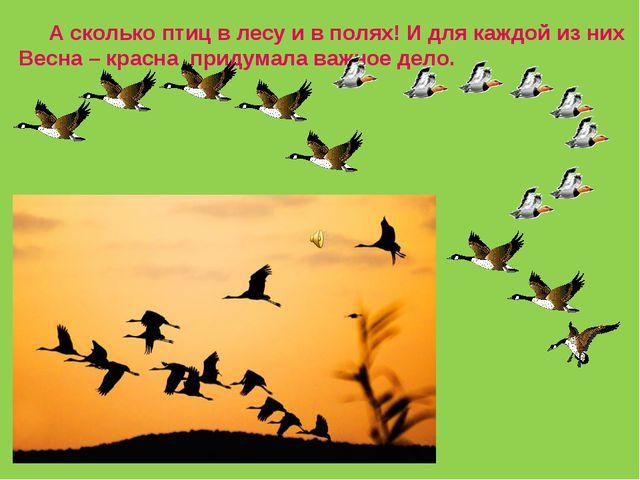 А сколько птиц в лесу и в полях! И для каждой из них Весна – красна придумал...